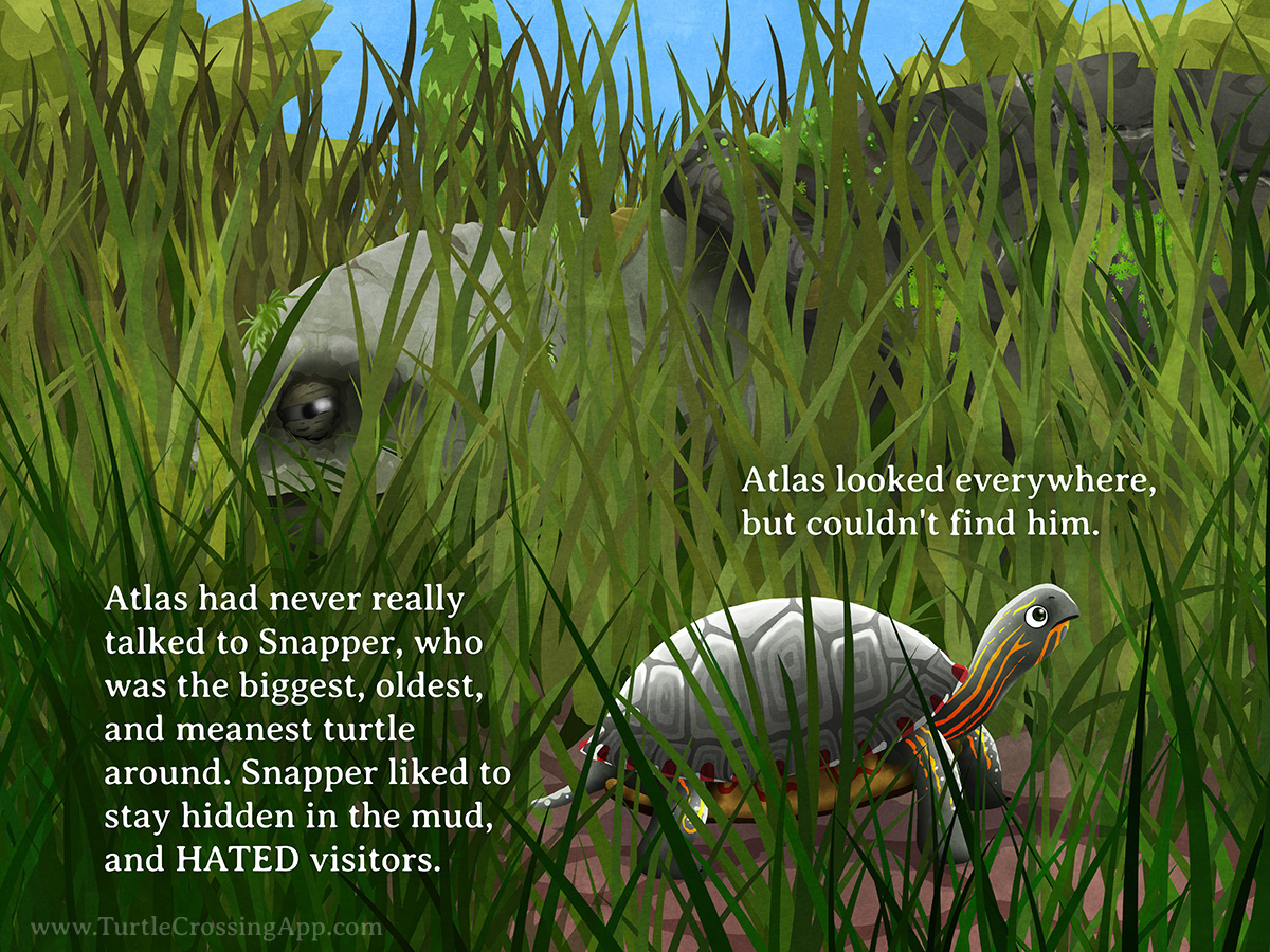 Turtle Crossing pg. 11